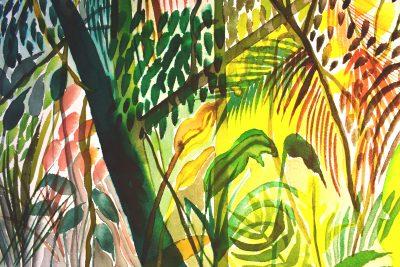 Cahuita National Park Study by Alice Gavin Atashkar