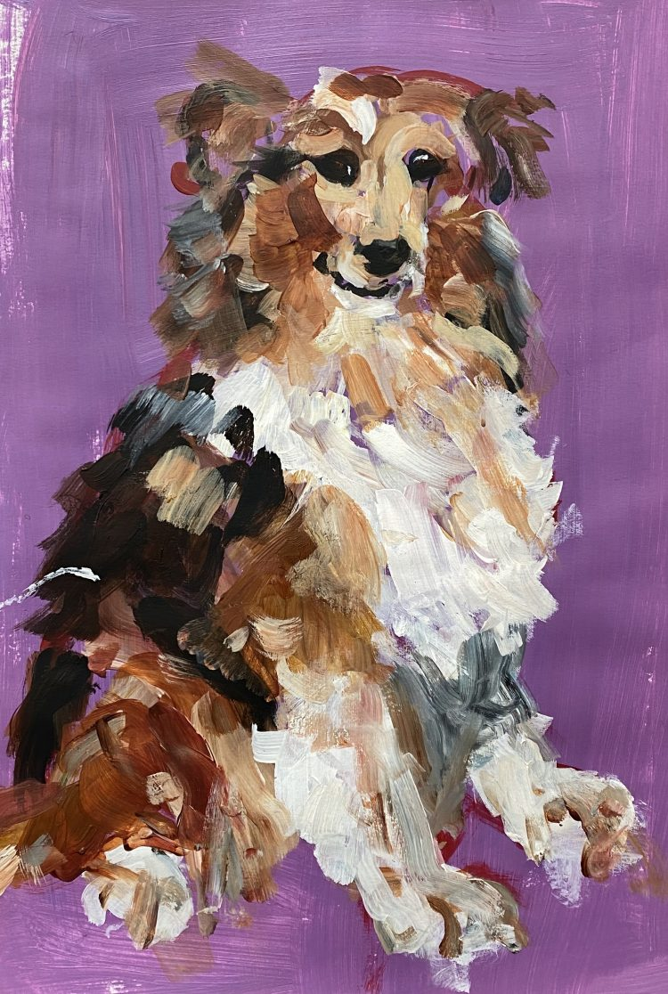 Collie Shepherd by Michelle Karpus, Acrylic on Paper