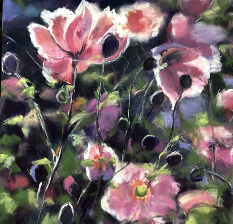 Japanese Anemones by Dawn Limbert, Pastel on paper