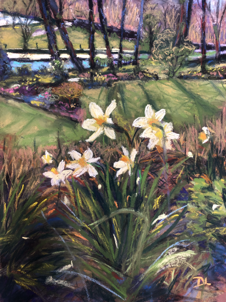 Daffodils in Spring by Dawn Limbert, Pastel on paper