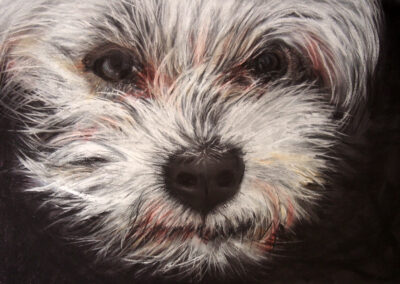 Poochie's Love by Gianna Lapini, Chalk Pastel
