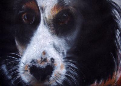 Lila by Gianna Lapini, Chalk Pastel