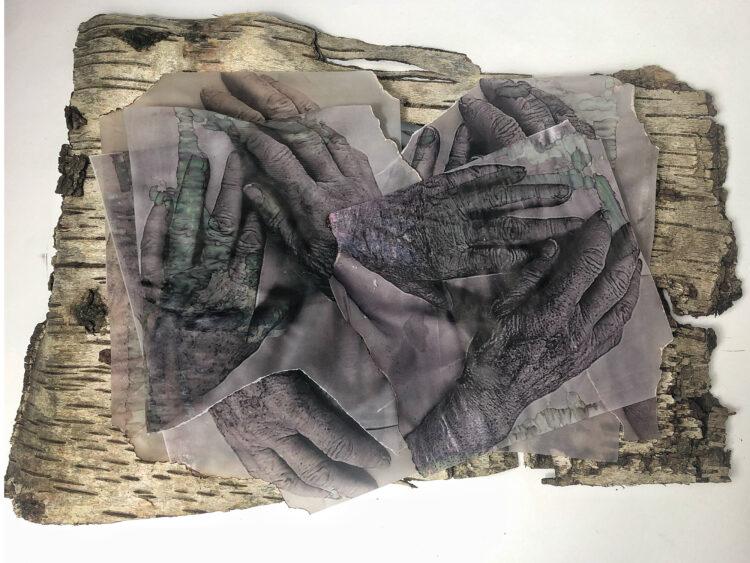 Tender Stroke by Natalia Millman, Tree bark, tracing paper, photo print