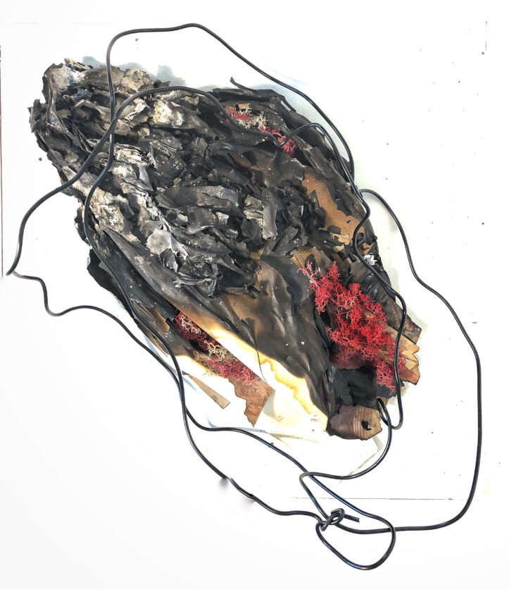 Vanishing Human by Natalia Millman, Burnt paper, moss, wire, acrylic